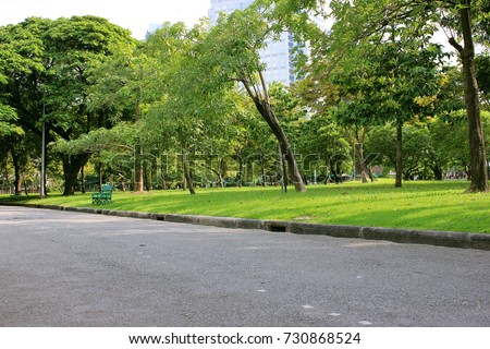 Holidays in bangkok public park,Family Activities,Nature background in thailand,Shade and tranquility