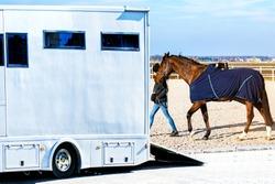Horse transportation van , equestrian sport