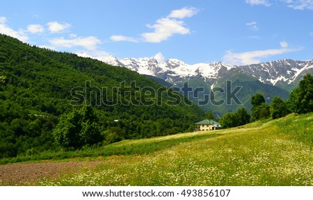house in the mountains #493856107