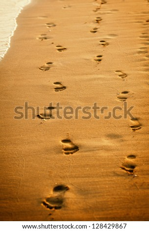 human footprints on the beach sand.Traces on the beach of a man and a woman.Footsteps on the beach by the sea in summer