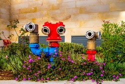 3 hydrants outside are in a flower bed