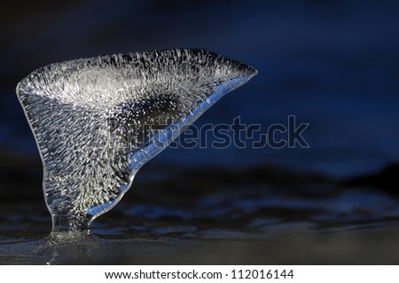 Ice on water, close-up - stock photo