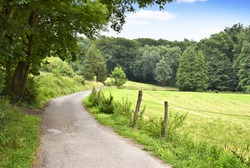 Idyllic footpath through fields and forest, nature background. Country road or street through an idyllic landscape in summer. Forest, fields and blue sky.