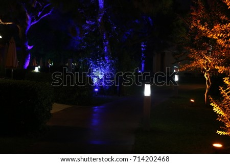 illuminated trees #714202468