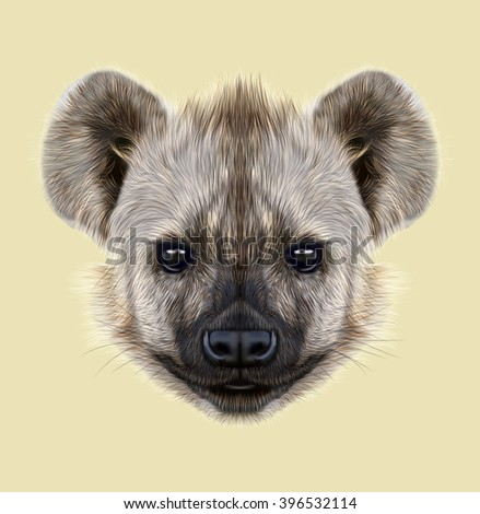 Illustrated Portrait of Hyena. The cute face of African Hyena on yellow background.
