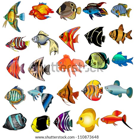 illustration kit fish is insulated on white background