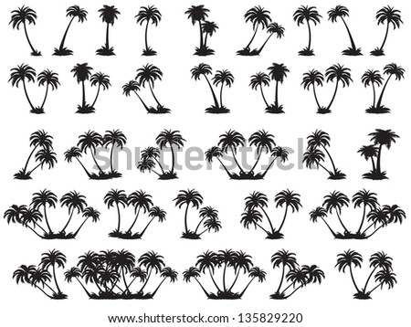 illustrations silhouette of palm trees. A set of black trees on a white background