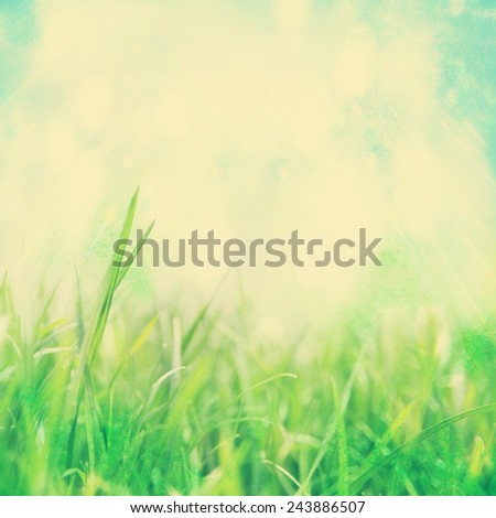 image from outdoor background series (sky and grass) toned with a retro vintage instagram filter effect