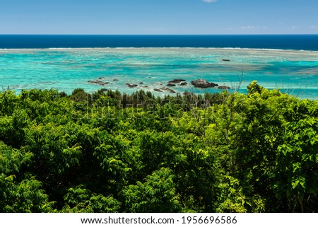 Impressive landscape of a stunning sea in a beautiful blue color n a coral reef. Rocks in the water and vegetation in the foreground. Landscape seen from the observatory of Tamatorizaki. Foto stock ©