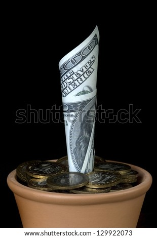 $ 100 in a flower pot on a black background