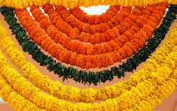 Indian festive decoration - a garland of orange and yellow Marigold (Tagetes) flowers