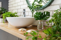 Interior of bathroom with natural jungle of plants. Bathroom with ceramic washbasin, faucet and green plant and leaves on wooden counter. Greenery at design home. Close up