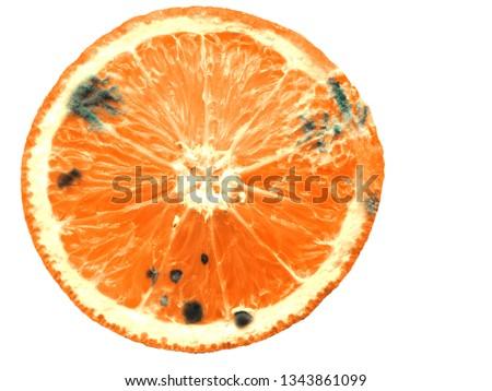 isolated  orange with mold
