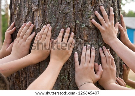 It is a lot of hands at a tree