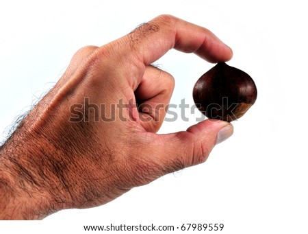 """""""it photographs of two fingers holding a chestnut """"   """