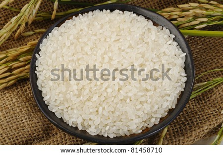japanese rice in cup