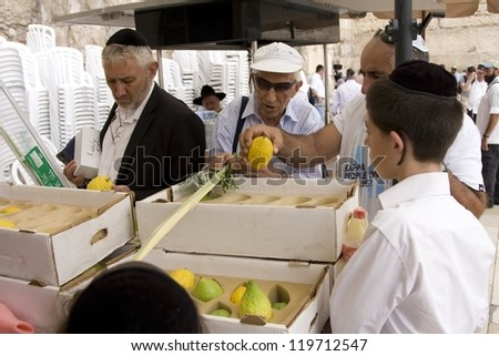 JERUSALEM-OCT. 02: Jews  inspects an Etrog  at the Western Wall during Jewish holiday of Sukkot, October 2, 2012 in Jerusalem, Israel.Etrog one of four species used during holiday of Sukkot