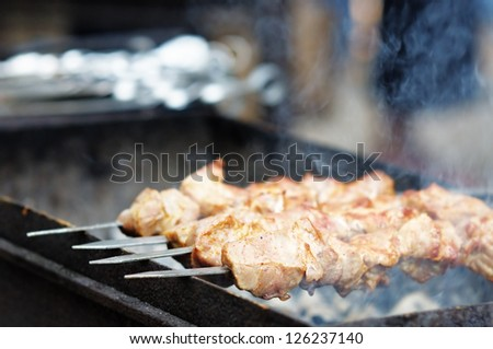 Juicy slices of meat with sauce prepare on fire (shish kebab)