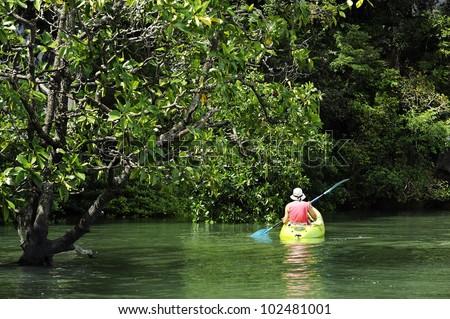 kayaking in the thai - kayaking at krabi thailand - kayaking at mangrove