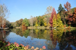 Lake and trees in Atatürk arboretum