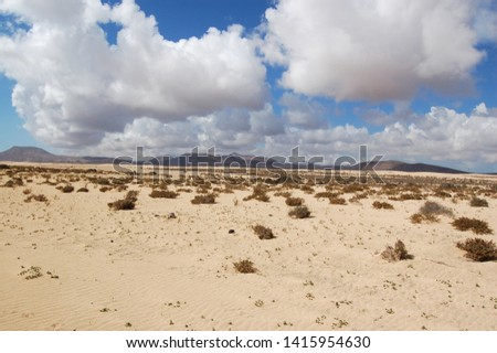 Landscape in the desert of sand dunes and volcanoes background with white clouds and blue sky in Fuerteventura. #1415954630