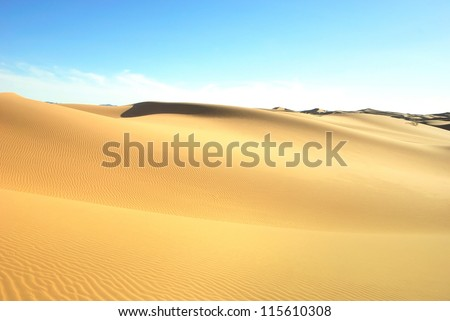 Libyan Desert. Dense gold dust, dunes and beautiful sandy structures in the light of the low sun. Traces on sand.