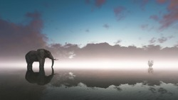 Lonely elephant stands on foggy lake at sunset