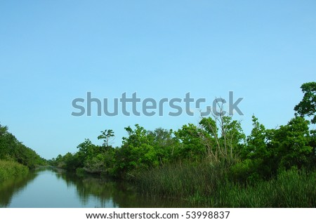 Louisiana bayou river