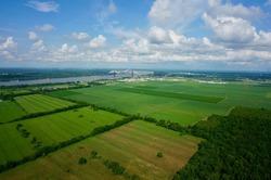 Louisiana Fields