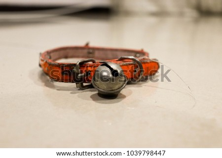 Macro dog collar with the little bell on the white floor. #1039798447