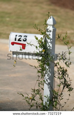 123 Mailbox with flowers around it