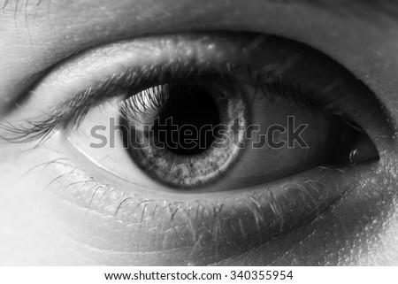 man eye close up