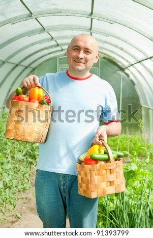 man with basket of harvested vegetables in greenhouse