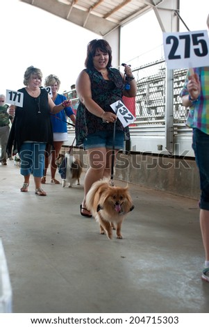MCDONOUGH, GA - MAY 10:  Contestants parade their dogs to be voted on at the annual Dog Days of McDonough festival on May 10, 2014 in McDonough, GA.