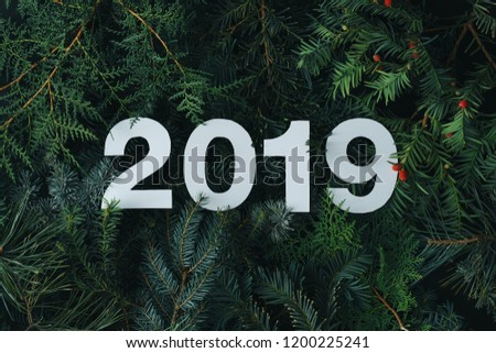 2019 Merry Christmas and happy New Year background with evergreen tree branches creative layout. Nature flat lay concept. #1200225241