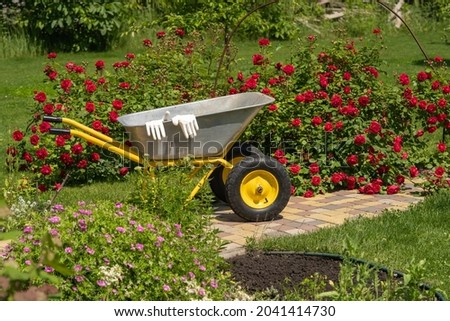 А metal garden cart and work gloves are placed in a beautiful green blooming garden. A wheelbarrow is near the rose bush Сток-фото ©