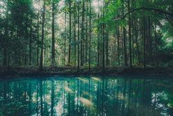 Morning sunshine hits an emerald green lake