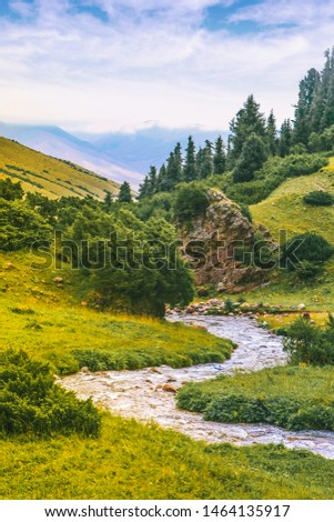 mountain river in a mountain gorge