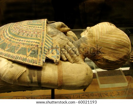 mummy of  pharaoh from a tomb