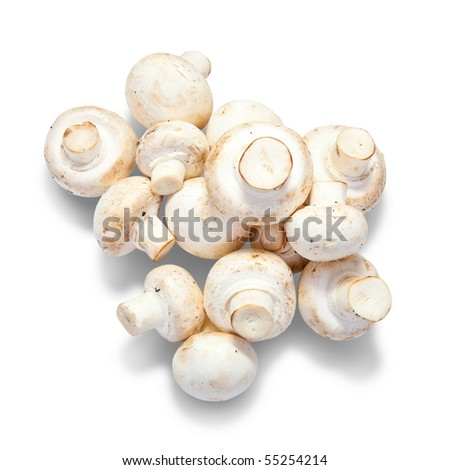mushroom. Isolated over white with clipping path