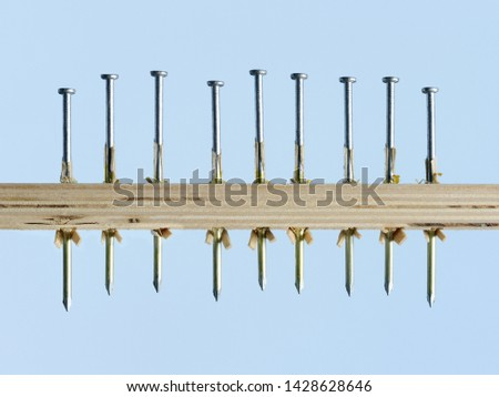 """""""Nailed it """" simple graphic row of nails driven consistently through wood board on blue background #1428628646"""