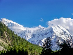 Nanga Parbat the ninth highest mountain in the world at 8,126m from the Fairy meadows .