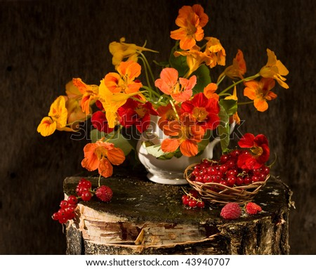 nasturtium flowers and raspberry and blackberry