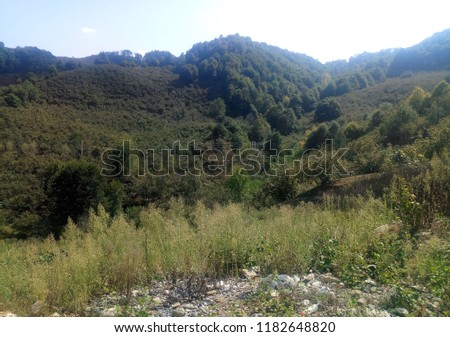 nature photo shoot  #1182648820