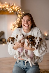New Year, Christmas. girl holds many small dogs in her arms, smiles and rejoices