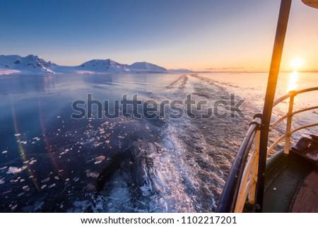 norway landscape nature of the mountains of Spitsbergen Longyearbyen  Svalbard   arctic ocean winter  polar day sunset sky - Shutterstock ID 1102217201