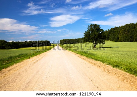 not asphalted road passing through agricultural fields