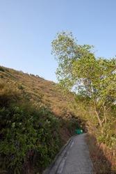 4 Nov 2006 Peaceful Walkway, Beautiful forest path at kwun tong, hk