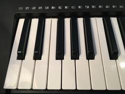 1 octave piano range board keyboard