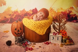 31 october, Haloween day, Baby lying in a wood basket to celebrate the holidays including pumpkin head, dried tree, maple, cherry, gold money with orange and yellow maple background.